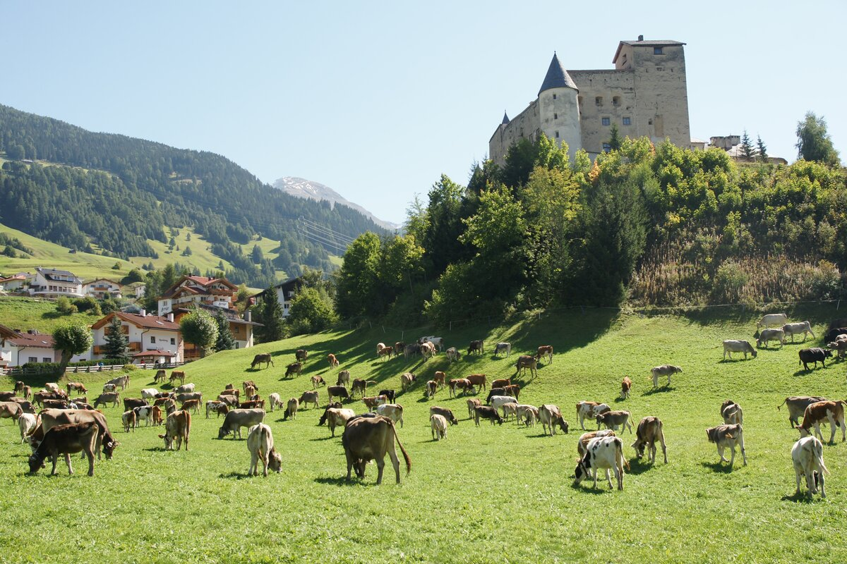 Rodelspaß in Serfaus-Fiss-Ladis |Rodelbahnen in Tirol